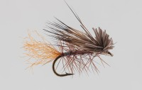154-opal caddis emerger