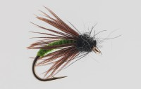 PM caddis green