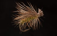 05-green-elk-hair-caddis